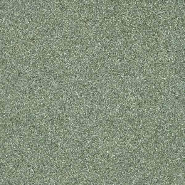 Gạch Taicera G49042
